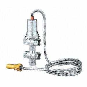 PROTHERM Клапан безопасности Caleffi 554 для котлов DLO